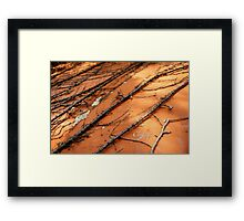 Clingy Framed Print