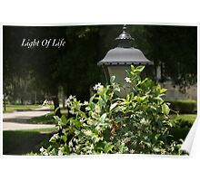 Light Of Life Poster