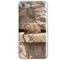 Hog On A Ledge iPhone Case/Skin