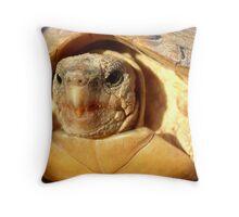 Parrot-beaked Tortoise Throw Pillow
