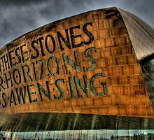 Wales Millennium Centre by Tim Hall