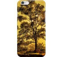 Bussey Hill, Arnold Arboretum iPhone Case/Skin