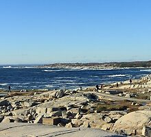 Peggy's Cove Panoramic 1 by Debbie  Roberts
