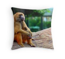 Cloud Gazing and Daydreaming - Brookfield Zoo Throw Pillow