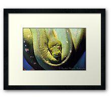 Green Coil Framed Print