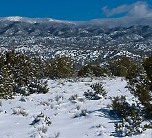 Santa Fe's Backyard by Roschetzky