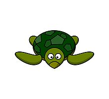 Cartoon Turtle Photographic Print