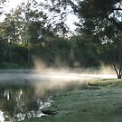 Mist on the river,Colleges crossing. by Marilyn Baldey