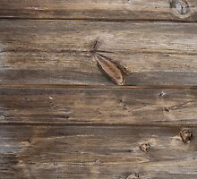 wood texture - wooden background 3 by ohaniki
