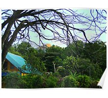 Lushness Of El Valle, Panama II Poster