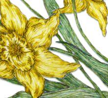 """Daffodils """"t"""" Sticker"""