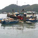 fishing Village and boats Tai O Hong Kong by Camelot
