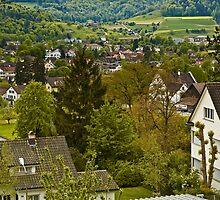 Winterthur Switzerland by Dania Reichmuth