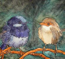 Blue Wrens III by Alexandra Felgate