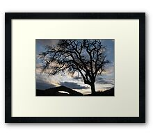 Sunstone Winery Framed Print
