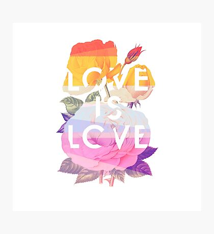 Love is Love Photographic Print