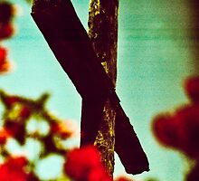 cross processed religion  by typhotos