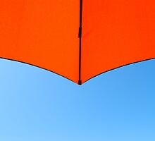 Orange on Blue by Paul Finnegan