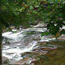 Rippling River by Jaclyn Hughes