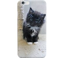 Tiny Baby Spider Whiskers iPhone Case/Skin