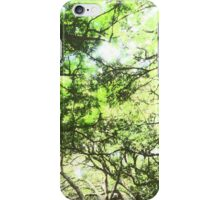 Forest Canopy  iPhone Case/Skin
