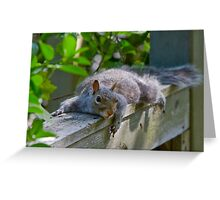 Protective Momma :) Greeting Card