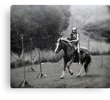 Knight in Shining Armour - Gumeracha, SA Canvas Print