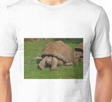 Giant Tortoise Unisex T-Shirt