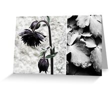 almost black Greeting Card