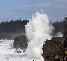 Surf on the Cliffs - Cape Arago by CatrinaM