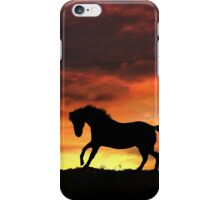 Silhouette Horse with Firey Sunset iPhone Case/Skin