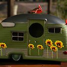 Motorhome for the Birds by redhawk