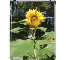 Bumble bee on a sunflower iPad Case/Skin