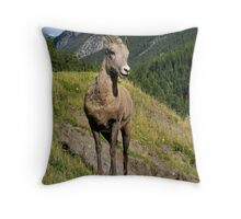 Lady Ewe - Lake Minnewanka, Banff National Park Throw Pillow