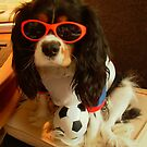 Charlie Girl ready for the World Cup by AnnDixon