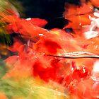 Wind'n Leaves1 by Doug Kean Shotz