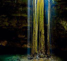 Cenote-2 by Zane Paxton