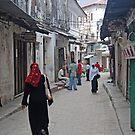The Streets of Zanzibar, Tanzania by Adrian Paul