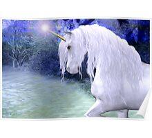 Star .. a white unicorn Poster
