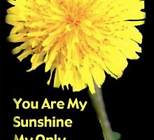 Sunshine by DreamCatcher/ Kyrah Barbette L Hale