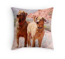 Desert Dogs Throw Pillow