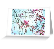 Japanese Blossom Greeting Card