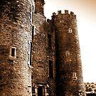 Enniscorthy Castle, Co. Wexford, Ireland by Berns