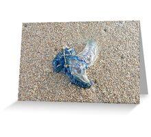 """Blue Bottle Stinger"" Greeting Card"