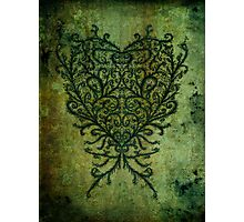 Feathered Peacock Heart - Print Photographic Print
