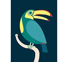 TOUCAN WITH RED NAILS Photographic Print