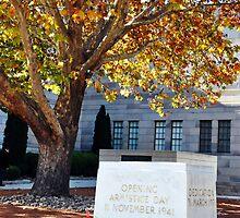 Australian War Memorial by lu138