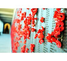 Wall of Honour Photographic Print