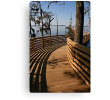 Wooded Curves Canvas Print
