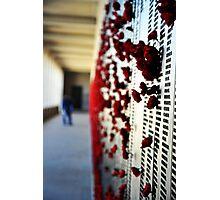 Wall of Honour, Australian War Memorial. Photographic Print